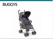 Radern-buggy